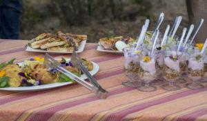 South African Safari Breakfast in bush